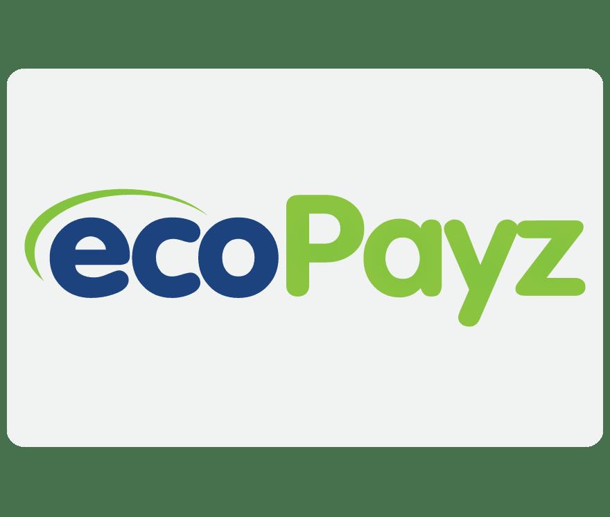 الكازينو على الجوال EcoPayz