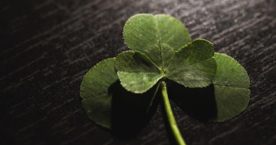 سحر الحظ للمقامرة: السحر وراء علبة من الحبوب